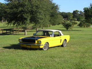 Mustang at Jacks (4)
