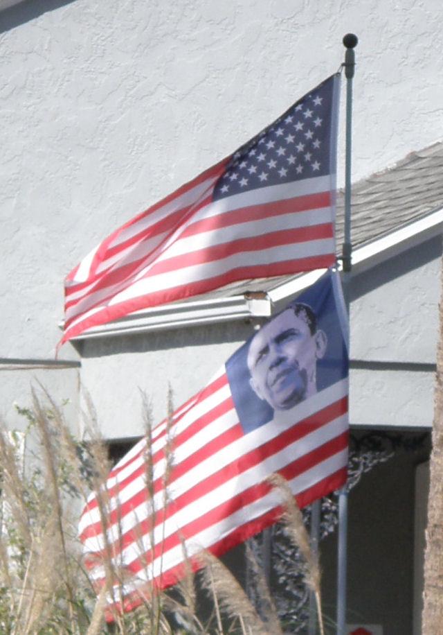 ObamaFlag000cropped