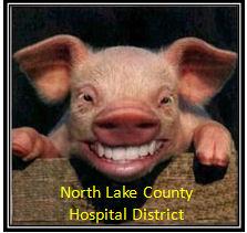 Nlchd pig logo 4