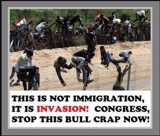 IllegalImmigrantInvasion