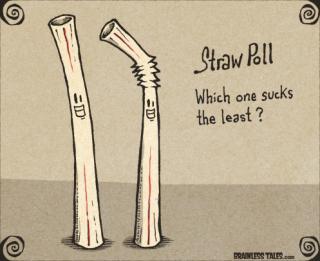 Straw-poll graphic