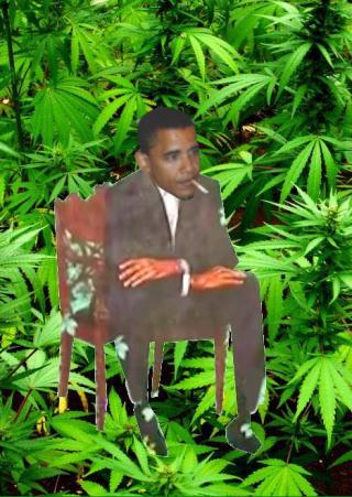Obama MJ painting