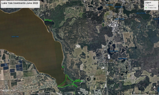 Little Lake Harris June 2020